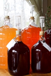 homemade fruit wines in carboys