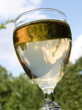 apple wine in glass